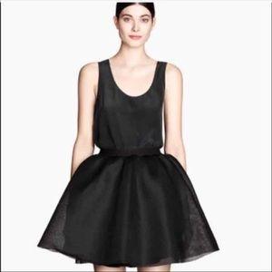 H&M Mesh circle skirt
